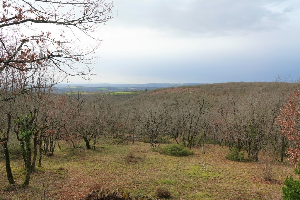 Le Bois d'Imbert